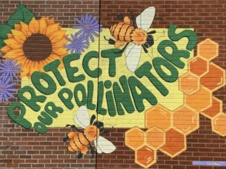 protect-our-pollinators-mural
